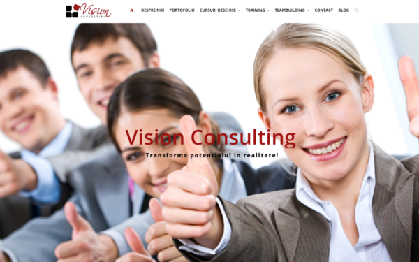 vision consulting